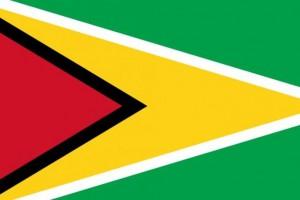Россия и Гайана отменили визовый режим