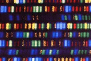 Нобелевская премия по химии присуждена за исследования механизмов репарации ДНК
