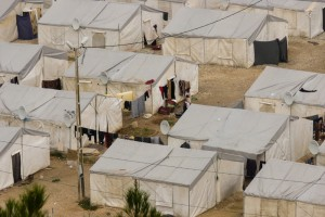 Власти 22 штатов в США отказались принимать беженцев из Сирии