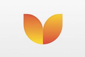 Воронежская область обзавелась логотипом