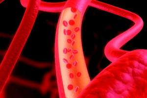 Плохое состояние артерий повышает риск развития рака и болезней почек
