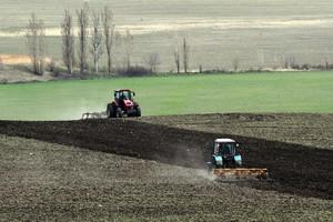 Производители сельхозпродукции отметили проблемы с получением господдержки