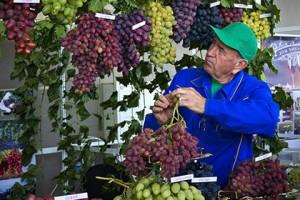 Крымские хозяйства примут участие в крупнейшей международной винной выставке