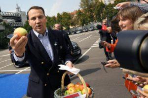 Россия заподозрила Казахстан в реэкспорте польских яблок