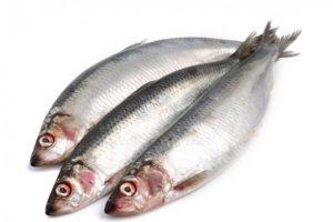 Дети, которые едят много жирной рыбы, имеют более развитые навыки чтения
