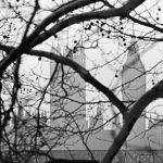 На Лондонском кинофестивале представят фильмы Серебренникова и Твердовского