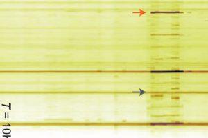 Одноатомная «лупа» помогла увидеть отдельные связи в молекуле