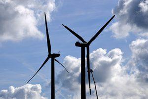 Китайцы построят ветряную электростанцию в Карелии