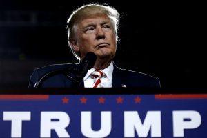 Трамп намерен создать зоны безопасности в Сирии