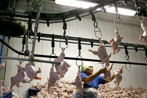 Москва и Минск продолжают выяснять отношения на продовольственном рынке