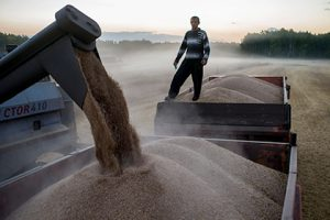 Назван размер турецких пошлин на российскую сельхозпродукцию