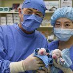 Корейский ученый рассказал, что мешает клонированию человека