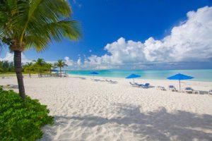 Багама-мама для новой ячейки