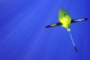 Бесшумные роботы «слушают» ветер в море