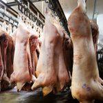 Россия ограничила поставки свиней и свиноводческой продукции из Венгрии