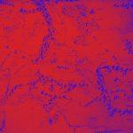 Нейросеть построит «настоящую» 3D-карту Средиземья