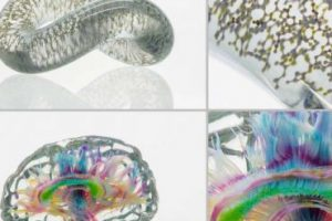 Новая технология 3D-печати позволяет создать почти идентичную копию объекта