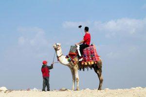 Доходы Египта от туризма выросли на 77%