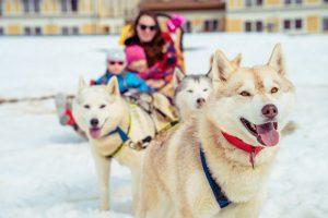 Горнолыжный сезон в Сочи может начаться уже в конце ноября