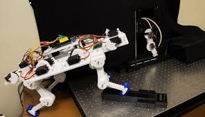 Робот научился ходить «с нуля» всего за 5 минут и разработал индивидуальную походку