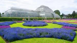 В каких европейских городах уже расцвели первые майские цветы