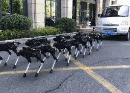 Китайцы запрягли робособак в упряжку