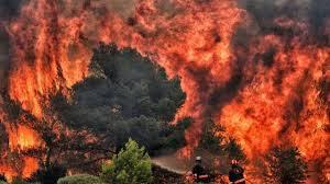 Греция в огне: пожары распространяются слишком быстро