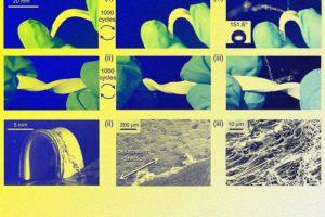 Супергидрофобный материал сохранил свои свойства после тысячи сгибаний