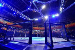 UFC планирует провести бой Фергюсон — Гэтжи на частном острове