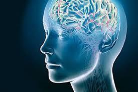 Ученые доказали, что коронавирус ведет к гибели клеток мозга