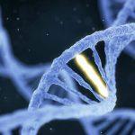 Древние гены делают некоторых людей особо восприимчивыми к COVID-19