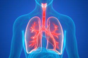 У тех, кто бросил курить, легкие »волшебным образом» исцеляются