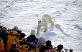 Ростуризм проведет первый международный арктический медиа-конгресс