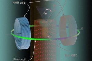 Физики впервые заставили временные кристаллы провзаимодействовать