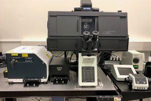Сканирующие микроскопы, их достоинства и применение