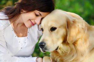 Как лечить анемию у собак натуральными средствами?