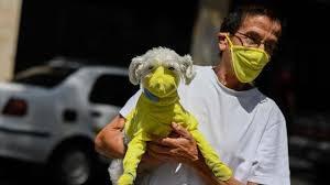 Ученые выяснили, какие животные наиболее чувствительны к SARS-Cov-2