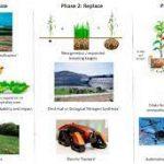 Эффективное использование азотных удобрений снизит выбросы от растениеводства на 60 процентов