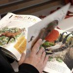 Курорт Красная Поляна презентовал книгу о кавказской серне — живом символе курорта