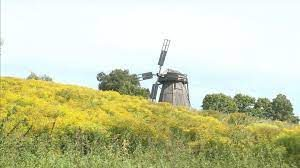 Реконструкция водяной мельницы заканчивается в селе Овстуг Брянской области