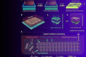 Нагрев в анизоле повысил эффективность и стабильность солнечных элементов